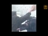 SERB - Самое полное видео нападения с тортами на Навльного, плюс видео с камеры видеонаблюдения
