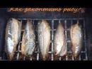Как закоптить рыбу. Копчена рыба копчение коптильня Как коптить рыбу