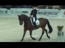 Robert Acs i Weinzauber 2 - Warsaw Horse Days - 26.03.2011
