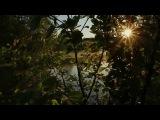 Orkidea - Unity (Solarstone's Pure Mix)