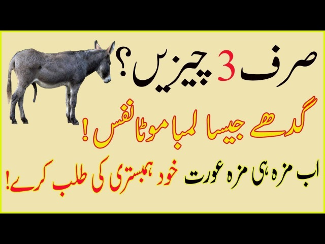 Serf 3 chezain Nafs ka Dheelapan Khatam Video dekho Mazy kro
