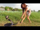 Cambodia Brave Girl Catching Big Snake in Cambodia-Village Food, How to cook water snake in Cambodia
