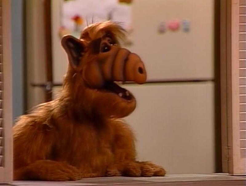 Alf Quote Season 1 Episode 25_Альф и Вилли