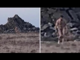 Mysterious Naked Feral Man Observed in Wales