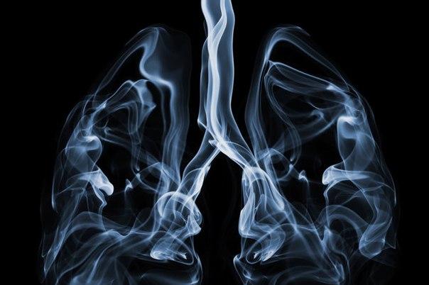 2018 Dünya Tütünsüz Günü Ne Zaman