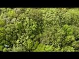 Трискелион. Природа Бретани - Triskell. Bretagne Sauvage 2015