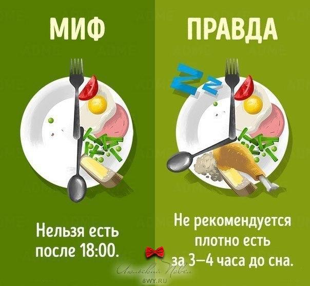 Еда и спорт: мухи отдельно - котлеты отдельно