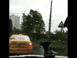 Ураган жесть шторм в Москве 29.05.2017