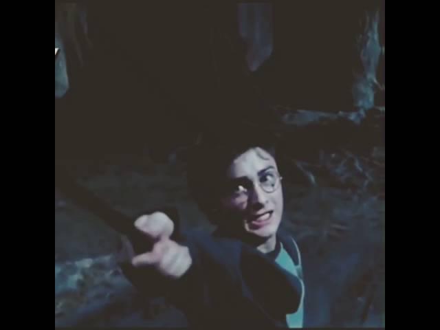 Гарри да ты заебал!