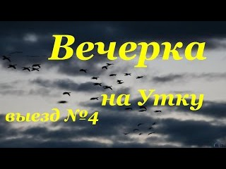 Вечерка на Утку! выезд №4. Hunting for a duck in Russia!!! Crazy hunting in Russia