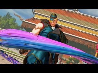 PS4 - Street Fighter V Screenshot Portfolio
