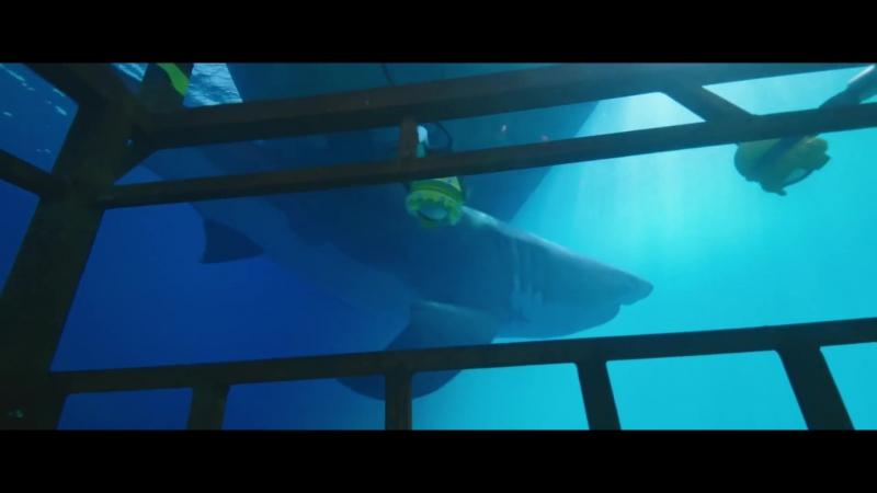 Синяя бездна (47 Meters Down): дублированный трейлер
