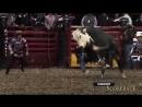Коррида.Неудачные бои с быками.