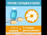 8 способов сделать шампунь. Как часто ты моешь голову