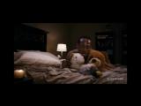 Марлон Уайанс трахает плюшевые игрушки (2013) трейлер
