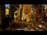 Айдамир Мугу - Любимая моя - 1080P HD