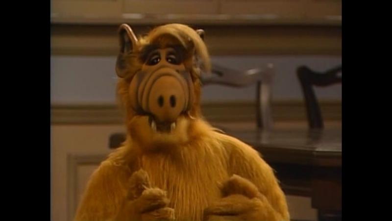 Alf Quote Season 4 Episode 2 Альф и Таннеры