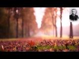 Edvard Grieg - Anitra's Dance Peer Gynt Suite ----- Эдвард Григ - Танец Анитры Пер Гюнт