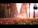 Edvard Grieg - Anitra's Dance Peer Gynt Suite -- Эдвард Григ - Танец Анитры Пер Гюнт