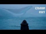 Сплин - Кит (Unofficial video)