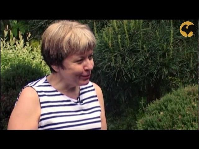 Изгородь из елей от Владимира Житкова Ландшафтные хитрости 66