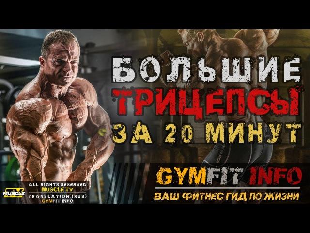 БОЛЬШИЕ ТРИЦЕПСЫ за 20 МИНУТ! Тренировка! СУПЕРСЕТ от ДЖАСТИНА ВЕССЕЛЬСА   RUS, Канал GymFit INFO