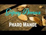 Gipsy Amax - Pharo Mange palmijri dajpri