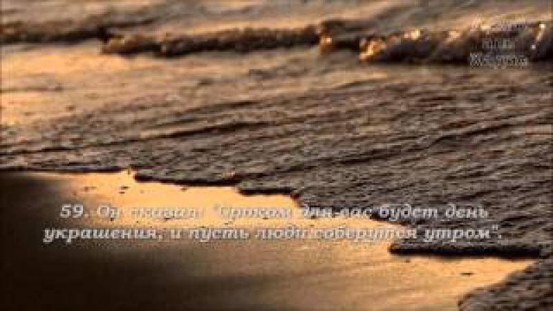 Исмаил Нури. Сура 20 ТА ХА (полная версия)