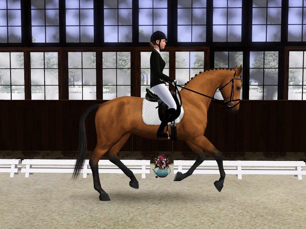 Регистрация лошадей в RHF 2 - Страница 7 AClEHTzSX-0
