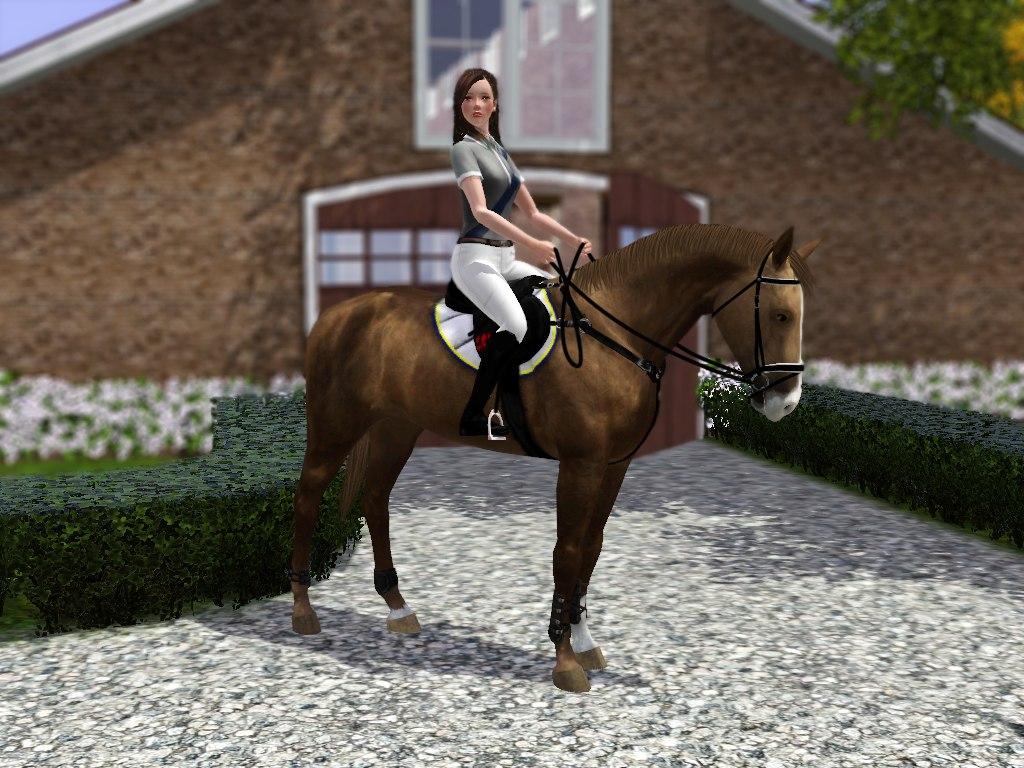 Регистрация лошадей в RHF 2 - Страница 7 E6JGk3yY3iI