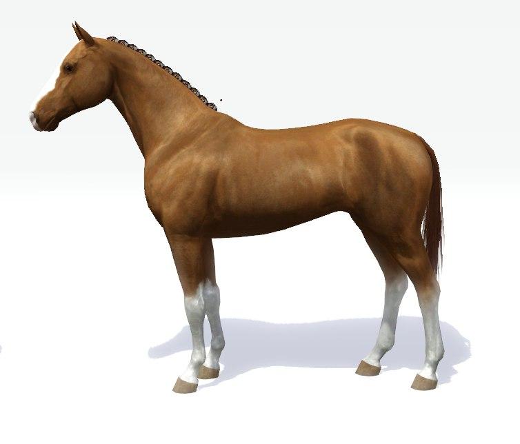 Регистрация лошадей в RHF 2 - Страница 7 DLA9SUuIOTk