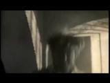 Максим Леонидов и ХиппоБэнд - Волки.mp4