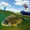 Рыболовный интернет-магазин Rybalka4you.ru