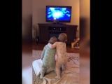"""Близнецы разыгрывают сценки из мультфильма """"Холодное сердце"""""""