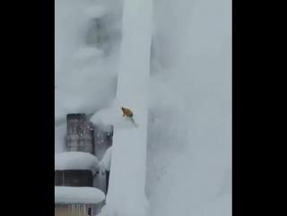 Сноубординг на дамбе
