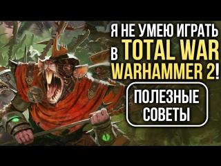 Я не умею играть в Total War- WARHAMMER 2! Полезные советы