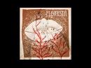 HANG DRUM FULL ALBUM - 47 minuts of Handpan music by ANUAH - FLORESTA