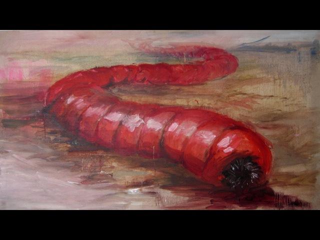 ЭТО ПРАВДА? Олгой-хорхой - монгольский червь смерти