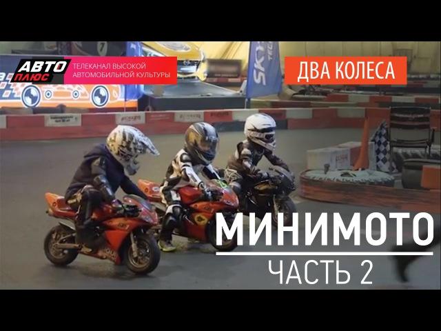 Два колеса - Минимото (Выпуск 2) - АВТО ПЛЮС