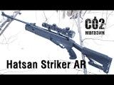 Hatsan Striker AR, обзор, краш-тест, стрельба по мишени, стрельба через