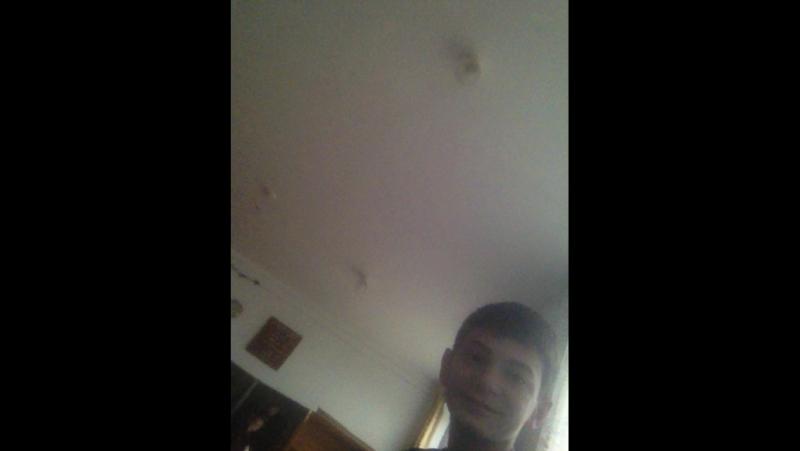 Борис Золоев — Live