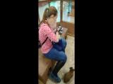 Забавное видео о том, как мы посетили мини зоопарк.