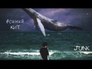 JUNK - Синий Кит (prod. Gho$t)