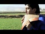 El Señor Es Mi Rey (Instrumetal) - Interpretado por Willy Gonzales de Arequipa Peru