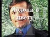 Евгений Мартынов -Яблони в цвету