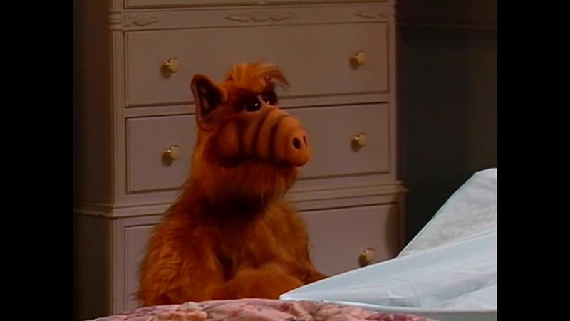 Alf Quote Season 1 Episode 21_Пятница 13