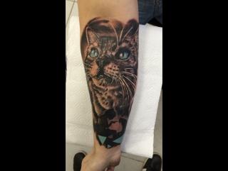 Cat tattoo by Jackonda