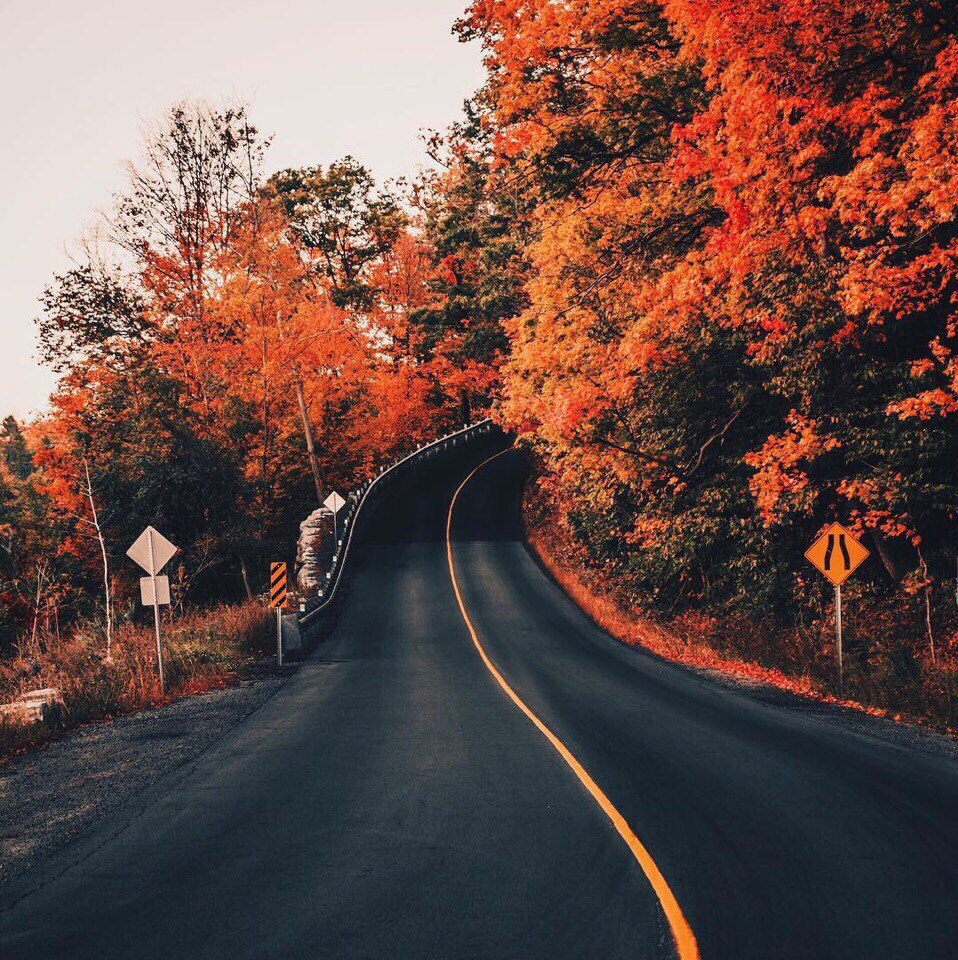 nsMfs xuyXg - Осень, ты вновь полна очарования