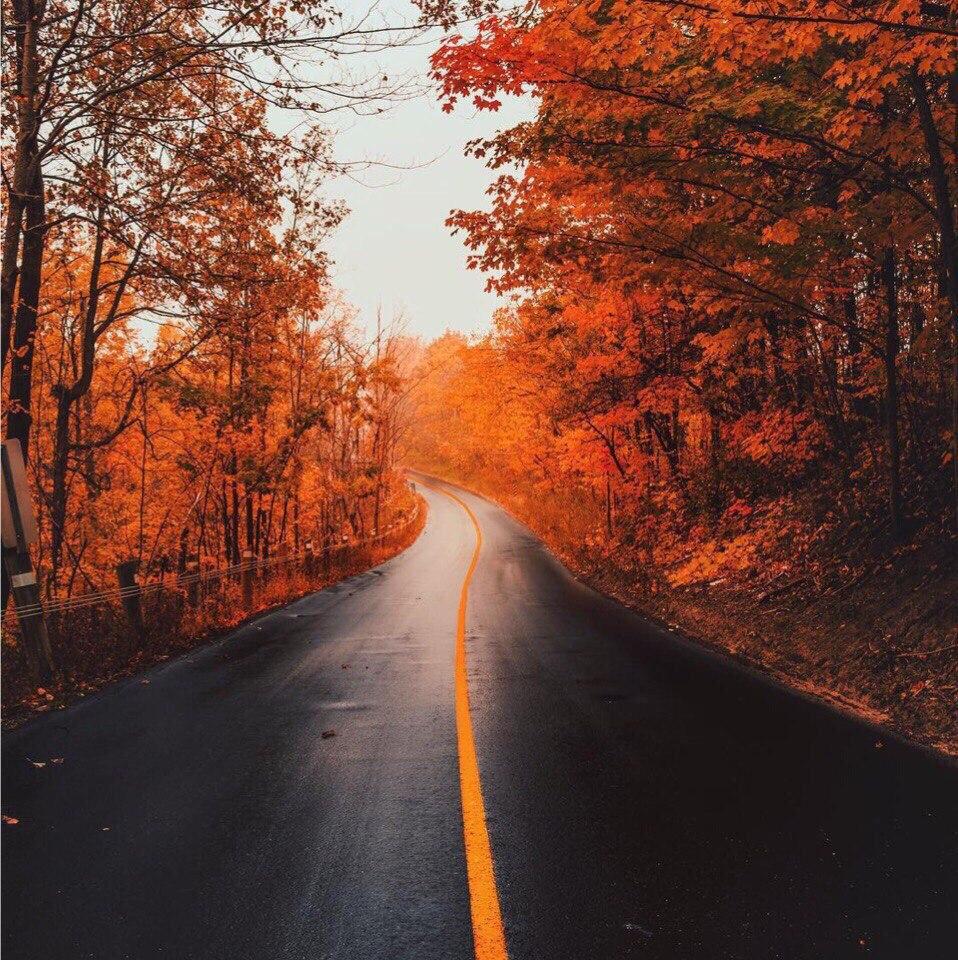 cWudMOLhRrk - Осень, ты вновь полна очарования