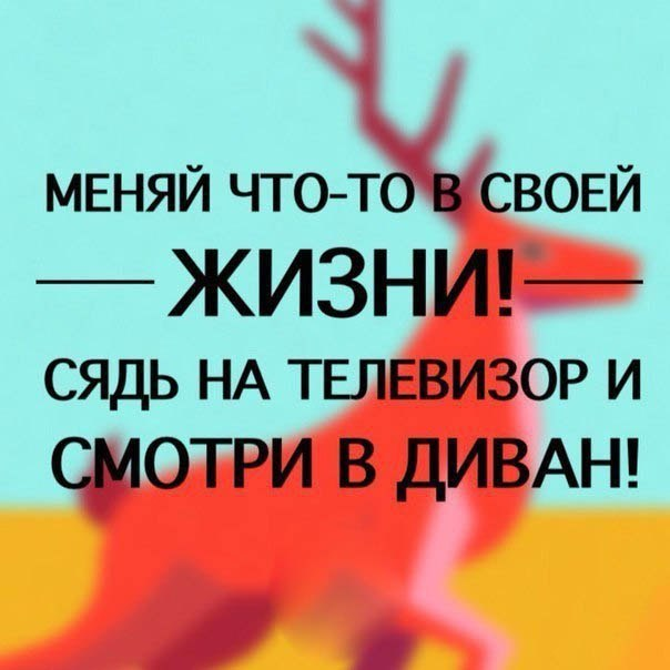 bmQOBHryXic.jpg